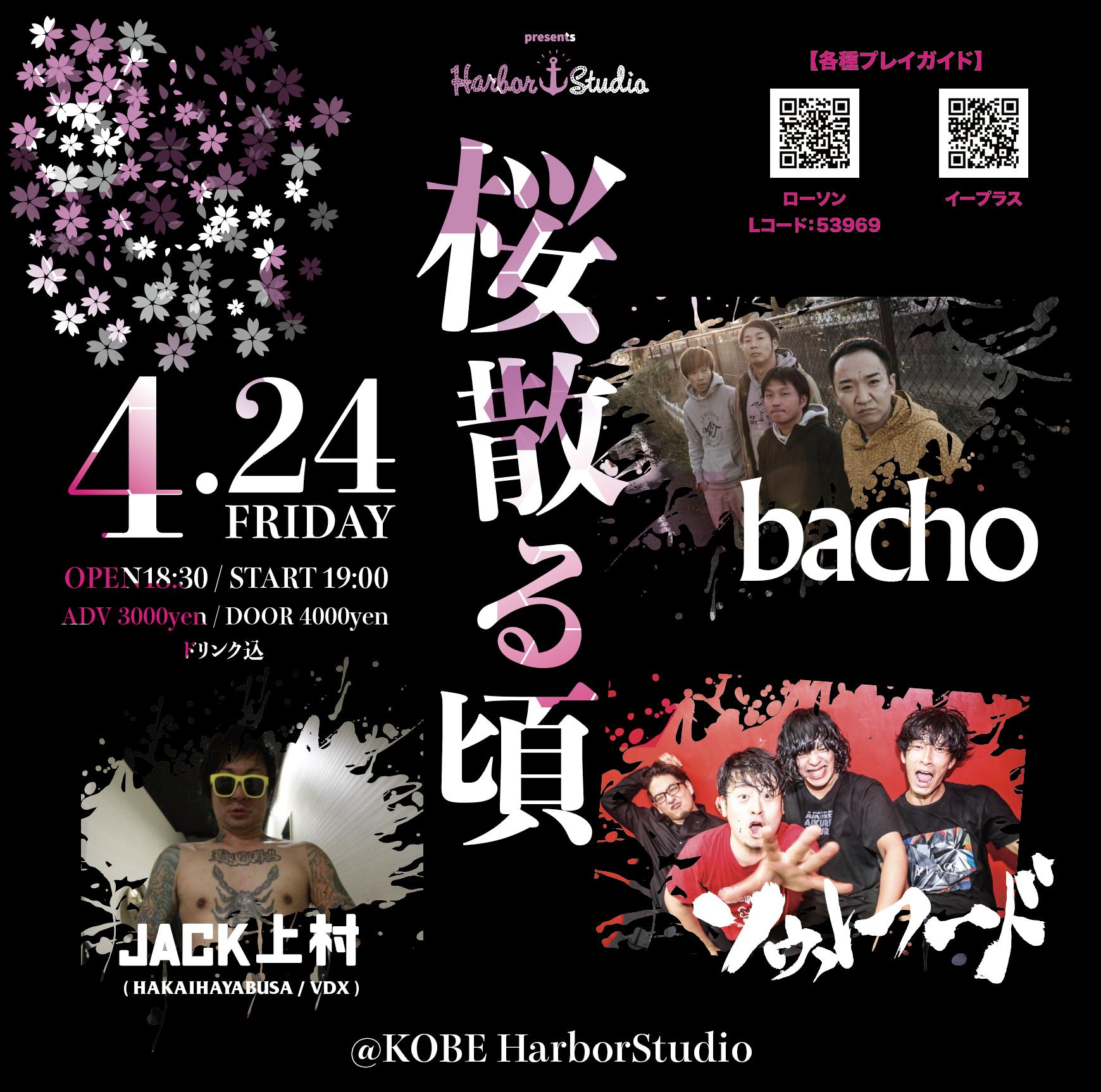 Harbor Studio presents「桜散る頃」